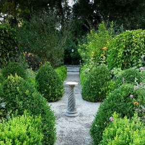 A Virtual Visit to Historic Gardens – Open Day 2020