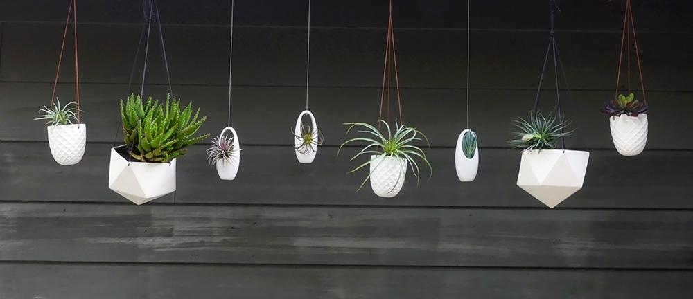 Hanging Planters header