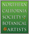 Northern California Society of Botanical Artists